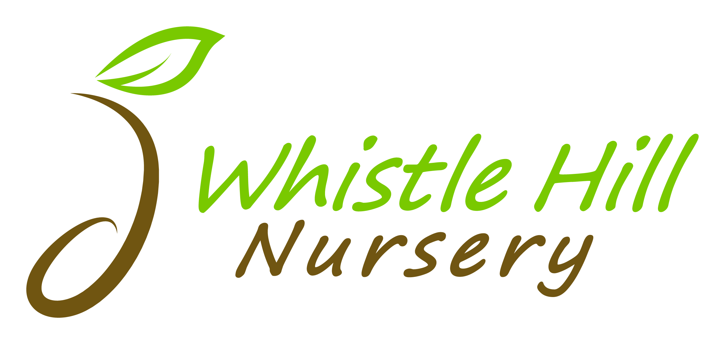 Plant logo shaped like a musical note with nursery name in green and brown