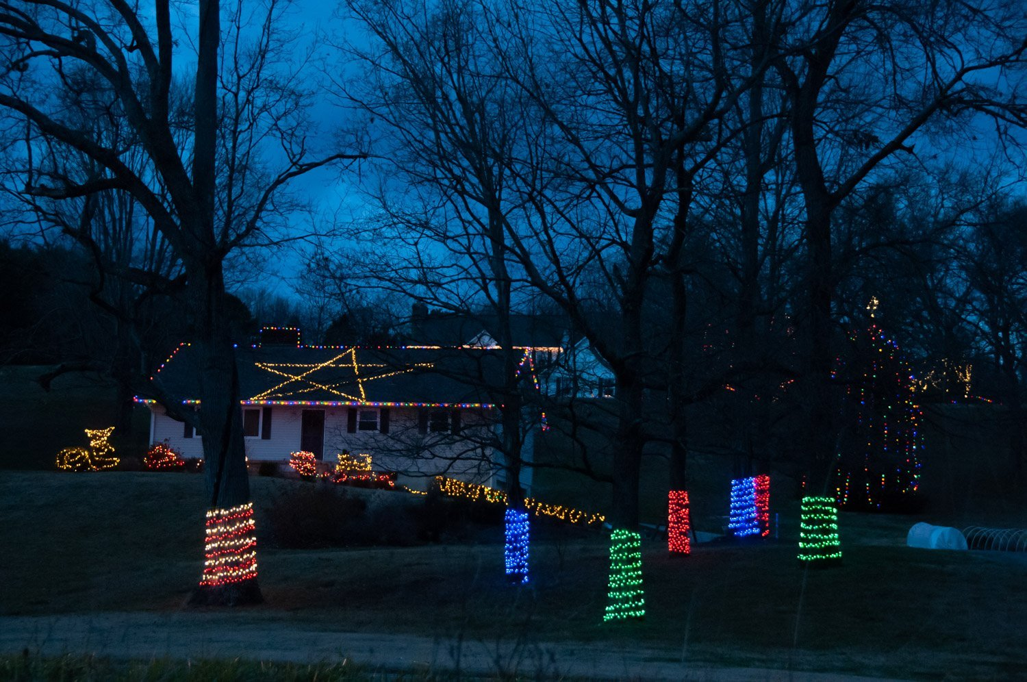 Christmas lights wrapping lower trunks in single primary colors plus multicolored lights on bushes and roof outline, while framing a giant star formed by lights on the flat of roof