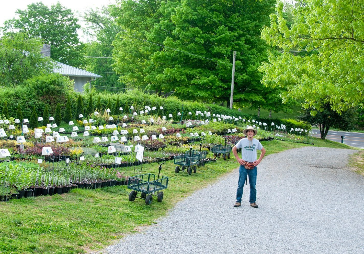 Young owner on sale day in front of his rows of nursery plants with description signs