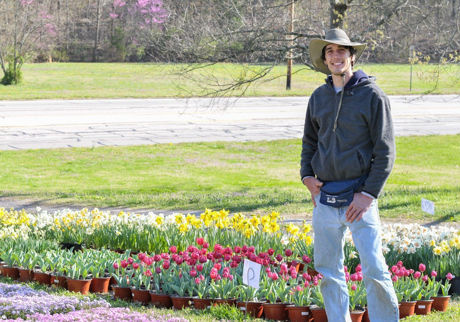 Young nursery owner standing in front of pots of red tulips and yellow daffodils